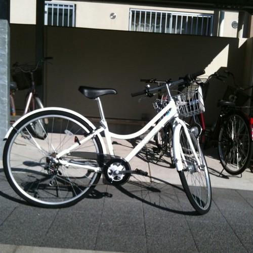 自分の自転車も買ってしまった。