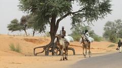 West Africa-2512