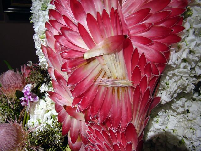 DSC05666 Market Woman detail - Fleur de Vie