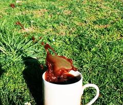 Cacao Cookie Splash (calinea~) Tags: keks cookie splash oreos coffe kaffe kekse cacao kakao cookiesplash