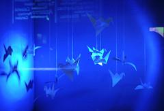 Color-Exhib1 (laurinkofler) Tags: blue color colour birds museum paper creativity design gut origami blu south natur azure exhibition uccelli cube museo blau vögel alto farbe azzurro tyrol würfel folding ausstellung südtirol farben bolzano gruppe bozen adige laurin kofler naturali gestaltung scienze falten esibizione papierfalten naturmuseum laurinkofler gruppegutit