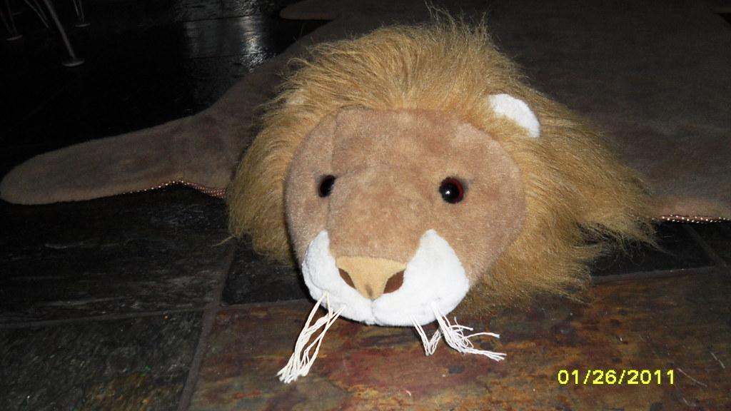 Lion Rug - Close Up of Head - $20 - Close Up