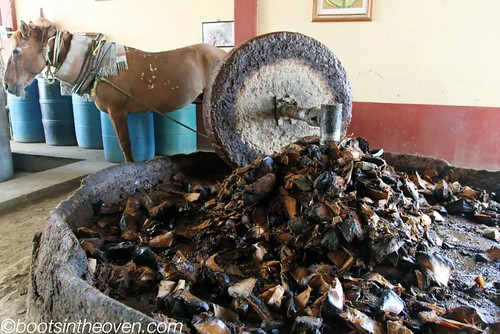 Grinding the smoked, cooked pina