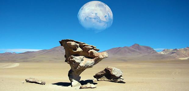 Piedra Arbol