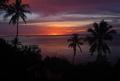 Mafia Island Sunset