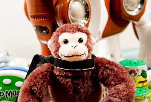 Project Loud Monkey 045