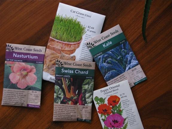 balcony gardening plants 001 seeds