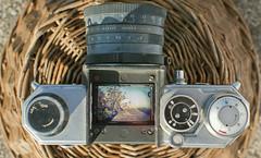Through the lens (Guillaume S) Tags: old flowers paris flower photoshop 35mm vintage lens 50mm spring lomo nikon sunny explore through flex f18 18 f28 edixa isconar d3000 iscogttingen