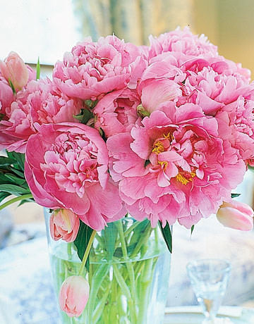 Detail-Pink-peonies-vase-HTOURS0105-de