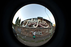 (Poli Marozzi) Tags: fish eye vintage nikon market retro timeless flee