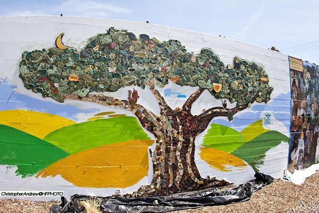 tileoaklandtree
