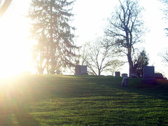 (Jenndalyn) Tags: light sunlight nature beauty sunshine spring cemetary graves growth growing rebirth renaissance magnolias newgrowth springday