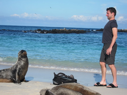 Me vs. Sea Lion