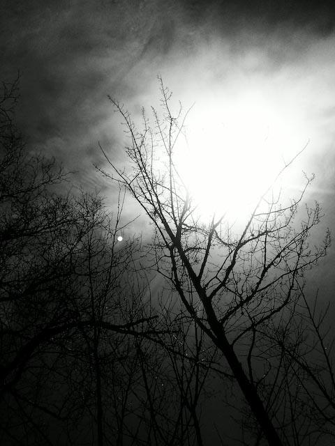 Photo0666E001