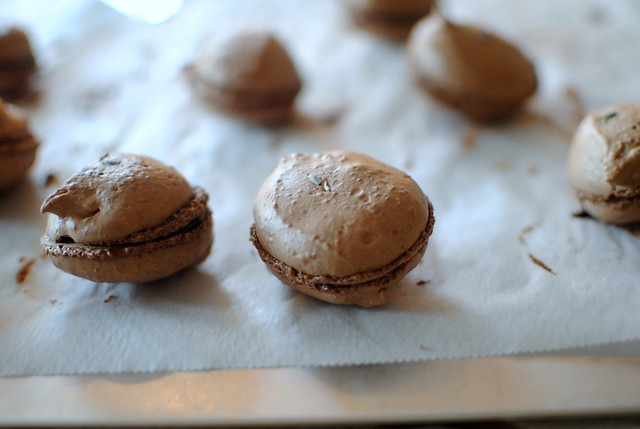 chocolate lavender macarons