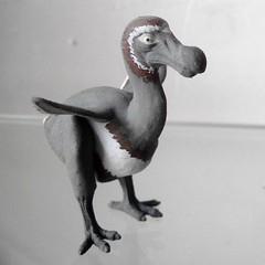 Primeval dodo