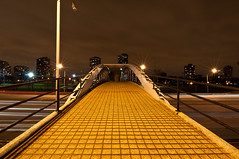 Bridge Over A River Of Trails (Explored 4/20/11) (benchorizo) Tags: longexposure chicago nikon lakeshoredrive lighttrails banias d90 northavepedestrianbridge
