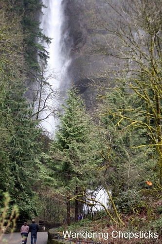 4 Multnomah Falls (Winter) - Columbia River Gorge - Oregon 3