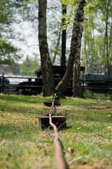 Hornbostel-21 (georgsteph) Tags: kali frderturm bohrturm dea hornbostel oel erdgas wietze pumpen erdoel oelfrderung oelpompe