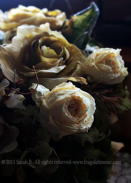 fiorifinti