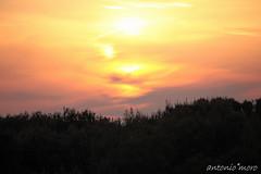tramonto riva dei tessali (antonio moro 1978) Tags: italy italia tramonto riva rosso puglia dei sera taranto vigilanza tessali antoniomoro rivadeitessali
