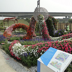 台北國際花卉博覽會 TAIPEI INTERNATIONAL FLORA EXPOSITION (ddsnet) Tags: travel plant flower flora sony taiwan cybershot international exposition taipei 花 台灣 台北 旅行 植物 花卉 花博 hx1 台北國際花卉博覽會 taipeiinternationalfloraexposition 媽媽拍的照片
