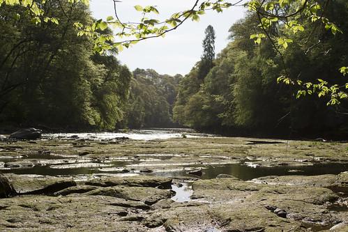 The River Ayr at Failford Gorge