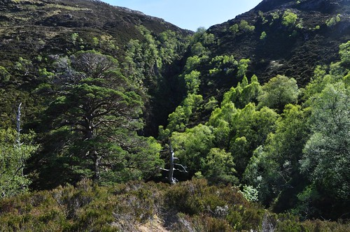 Cnoc na Gaoithe Gorge