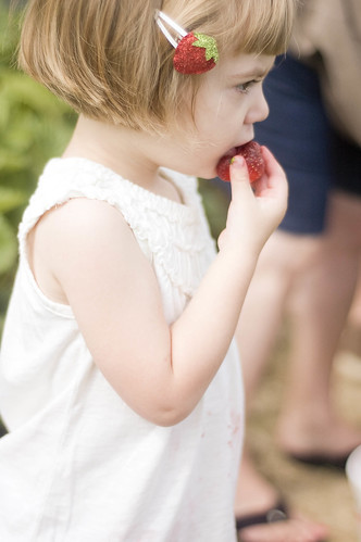 strawberry pickin'_0013