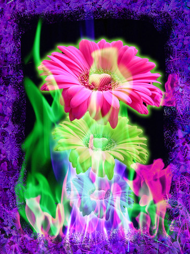 Burning Desire by Deltoid Steep