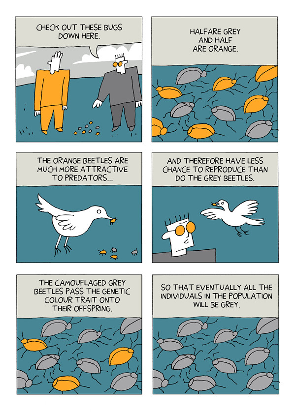 Natural Selection Animal Comic Strip
