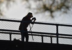 Photo Fence Friday (MTSOfan) Tags: jan janice woman wife silhouette chainlink photo cane dog leash