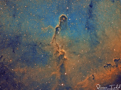 IC1396 - Elephants Trunk Nebula - Narrowband Hubble Palette (Simon Todd Astrophotography) Tags: ic1396 elephants trunk nebula nebulosity narrowband ha oiii sii hubblepalette deepsky deepspace astrophotography ukastronomy uk space atik skywatcher 383l eq8pro celestron c80ed qhy5lii astronomy hydrogenalpha astrometrydotnet:id=nova1741027 astrometrydotnet:status=solved