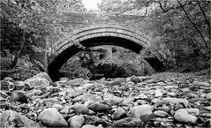 Deepdale Bridge & Beck . (wayman2011) Tags: fujifilmx70 lightroom wayman2011 bwlandscapes mono bridges becks rocks pebbles streams trees pennines dales teesdale barnardcastle deepdale countydurham uk