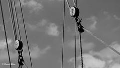 Pulleys in the sky - Sloop Andr-Yvette (patrick_milan) Tags: saariysqualitypictures rope cordage aussire accastillage buoy boue flotteur hublot porthole bout taquet latch poulie pulley ra palan cloche bell plouguin ploudalmezeau portsall kersaint landunvez landeda lannilis treglonou saintpabu pabu abers finistre brittany bretagne bzh bateaushipboatvoilierpchesailingfishingiroiseoceanportharbourquayquaiportbuoyantbuoy bouy bouey bhoy bhouy float bouee boei boj boja boya boje bojen boia boa poi poiju bauja dufl pelampung plude flyteboye plovecsamandira