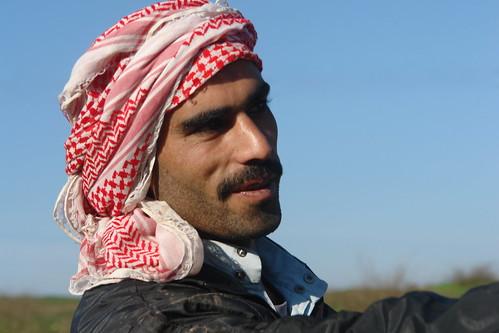 Syrian Shepherd