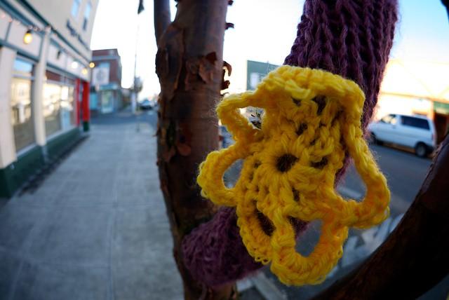 wool flower