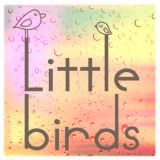 Little Birds Blog