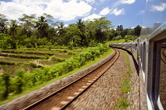 Train (robw1882) Tags: travel holiday motion blur speed train indonesia java journal tracks palm paddyfields travelphotography canon50d