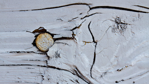 wood urban macro texture paint downtown nail kalamazoo 60mmf28 canon7d riverphotographyclub