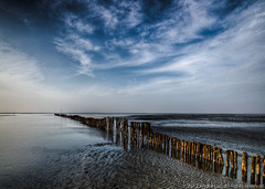 Wooden Clam Barrier (Andre Luu) Tags: seascape landscape fineart vietnam lowtide hochiminhcity waterreflection superwideangle seabed seatexture cangio bestlandscape sealandscape idream sandtexture cloudpattern wildbeach groundtexture toplandscape oceanlandscape bestcomposition musselpicking sal1635z sonya850 zeisszavariosonnart1635mm zeiss1635za