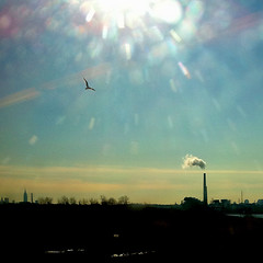 Smokestack & Freedom (Explored) (gimmeocean) Tags: bird landscape smokestack empirestatebuilding iphone newjerseytransit iphoneography