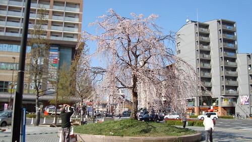 2011/04 JR二条駅東口 #01