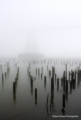 Morning Fog (Robert_Brown [bracketed]) Tags: county bridge red brown building robert fog oregon canon river rebel columbia astoria pilings megler clatsop