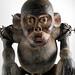 0727:6151a detail Ape figure, Bulu, Cameroon, Rep of Congo Border region