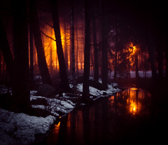 Mystical Mist #2 (Aspiriini) Tags: mist fog forest ditch trench dike mets littoinen sumu oja jonilehto aspiriini