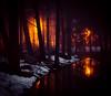 Mystical Mist #2 (Aspiriini) Tags: mist fog forest ditch trench dike metsä littoinen sumu oja jonilehto aspiriini