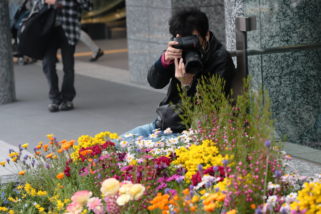 Beautiful flowerbed near renewed JR Osaka station