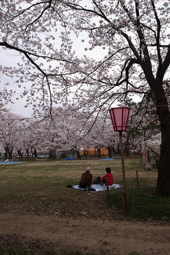 高田公園にて