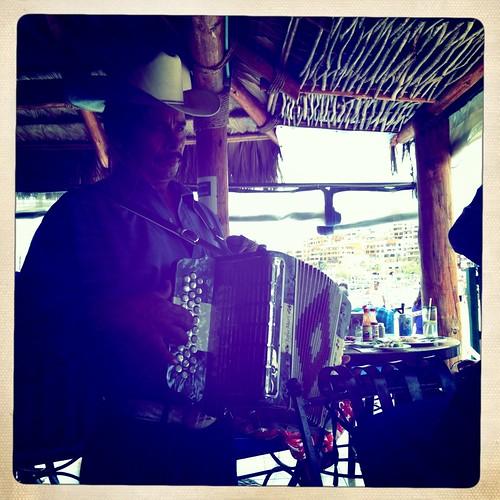 serenade by the mariachi